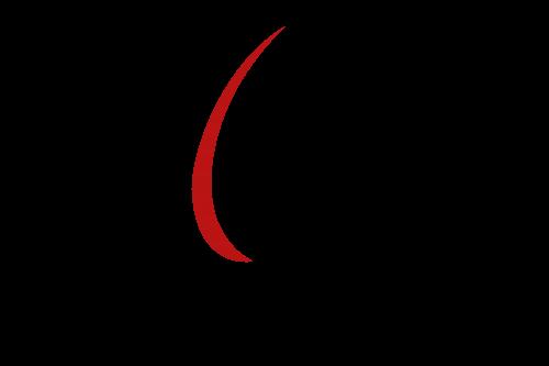 IMPETUS logotipas